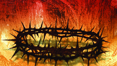 Picture of a crown of thorns similar to what Jesus Christ would have wore.