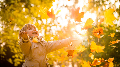 Little child catching falling leaves in fall season - on sunny evening
