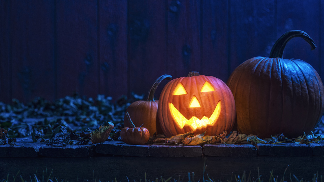 A glowing smiling Jack O' Lantern looking at the camera sitting on an old weathered wooden deck under the blue moon light. There are various size pumpkins and gourds sitting within the Fall leaves with a barn wall in the background.
